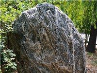 真泰山石  高1.5米