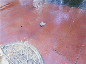 步行街下水道堵塞无人处理