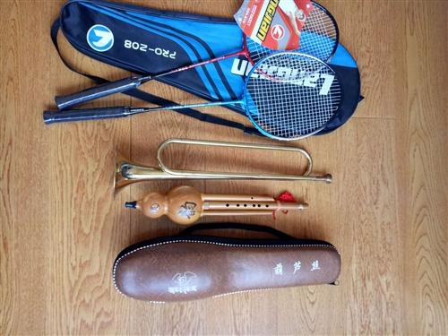 低價轉讓全新羽毛球拍,九五成新葫蘆絲和小號,適合小學生使用。咨詢電話18699217709