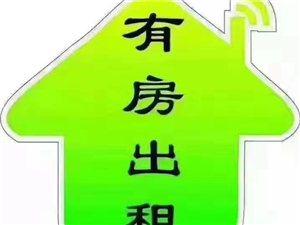 工人新村1室 1厅 1卫750元/月