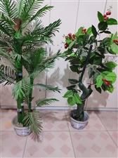 仿真绿植装饰盆栽,没地放了,2盆50元,自提,电话微信15832995691