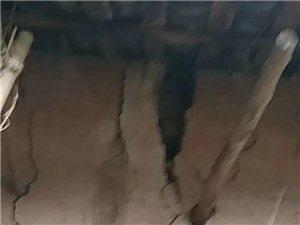 地震造成房子裂�p增大危�U