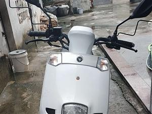 你好,本人出售雅馬哈摩托車一臺,價錢面議,在河婆內,有需要的可以聯系我,13533095323,(微...