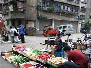 各大部�T���{蔬菜水果不能在外面�[���O�c占到��I,今天�不到九�c就搬出市�觯�