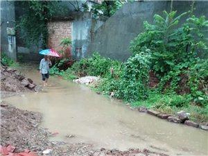 下过雨的村庄