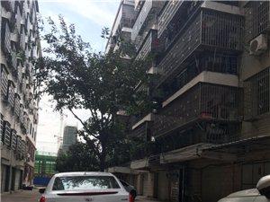 西延路青峰山庄3室 2厅 2卫1000元/月