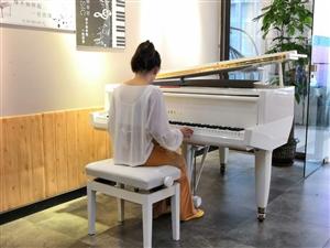 需要钢琴调律整修保养的朋友请速与我联系