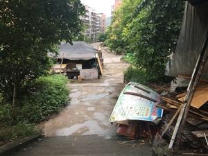 水天坪的违章建筑哪时候拆得完?
