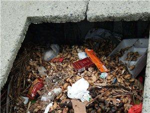 头灶镇金东村垃圾池清理不及时