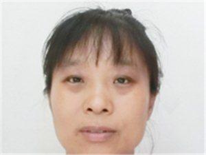 2019杞县寻找中国人寿诚信服务标兵评选活动012乔慧霞