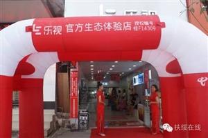扶绥县乐视生态体验店