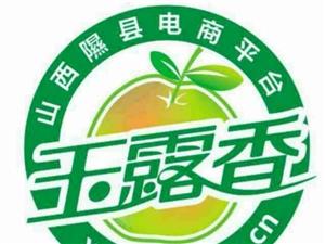 隰县农村电商微站