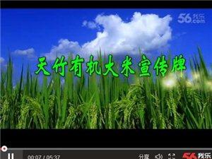 金溪天竹有机大米宣传片