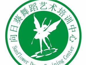 應城市向日葵舞蹈藝術培訓中心