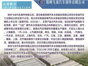 郑州飞龙汽车部件有限公司