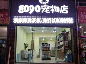 富顺8090宠物店