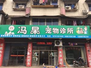 冯杲宠物诊所