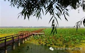宝坻大唐镇董塔镜湖水上乐园
