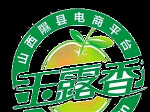隰县电商精准扶贫