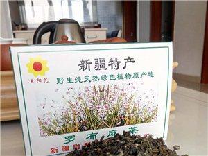 沙雅县太阳花农业生物开发合作社形象图