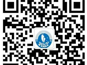 湖北枣阳硅油水溶性硅油高品质低价格全国发