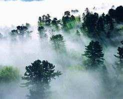 连康山自然保护区