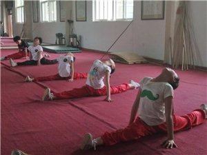 临潼红拳保护基地培训的华清小学学生武术表