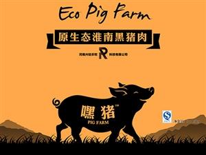 河南兴锐农牧科技有限公司