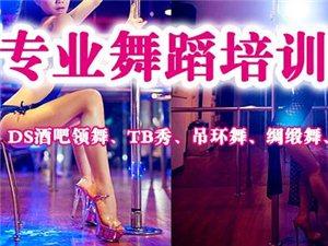 香港星秀舞蹈培训学校