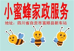小蜜蜂家政服务