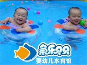 周年庆劲爆尽在鱼乐贝贝,暑期卡开始啦!形象图