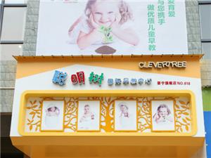 新宁聪明树国际早教中心