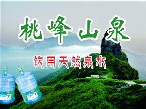 松桃桶装水(贵州桃源清泉水有限公司)