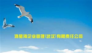鸿星海企业管理(武汉)有限责任公司宣传片