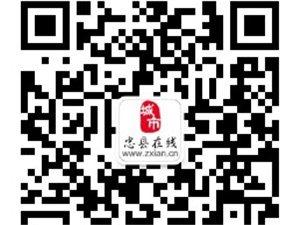 忠县人民政府