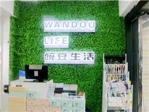 砀山县豌豆生活