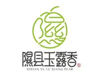 隰县玉露香梨采摘节