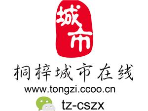 贵州映雪文化传媒有限公司