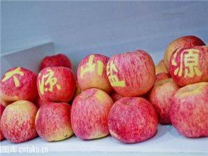 盐源县仁德苹果种植专业合作社