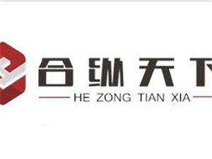 深圳市合纵天下南京分公司