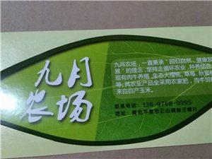 青岛九月农场农产品种植基地