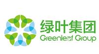 绿叶科技集团