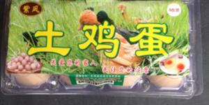 乐至县紫凤家庭农场有限责任公司