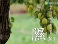中国梨乡在威尼斯人平台