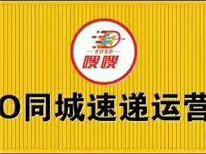 兴县SOSO嗖嗖同城速递形象图