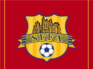 石林彝族自治县足球协会