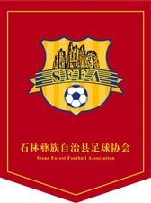 澳门赌博网站彝族自治县足球协会