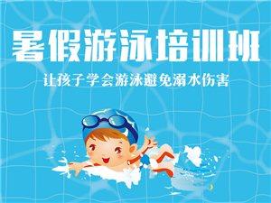 暑假游泳培训班招生