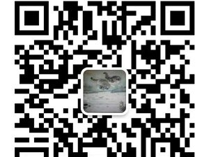 444840797_430_430