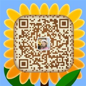 336144239_512_512